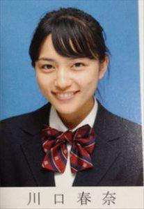 画像引用:https://articleimage.nicoblomaga.jp/