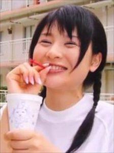 画像引用:https://yase-momo.c.blog.so-net.ne.jp/